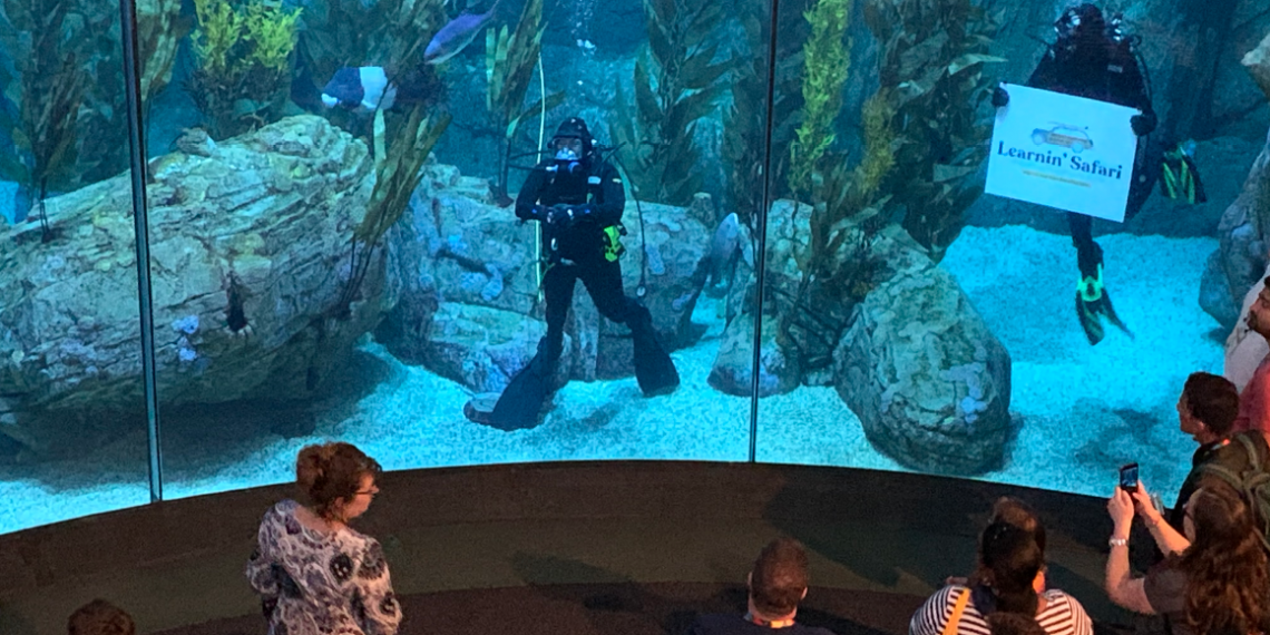 Scuba divers holding conference sign